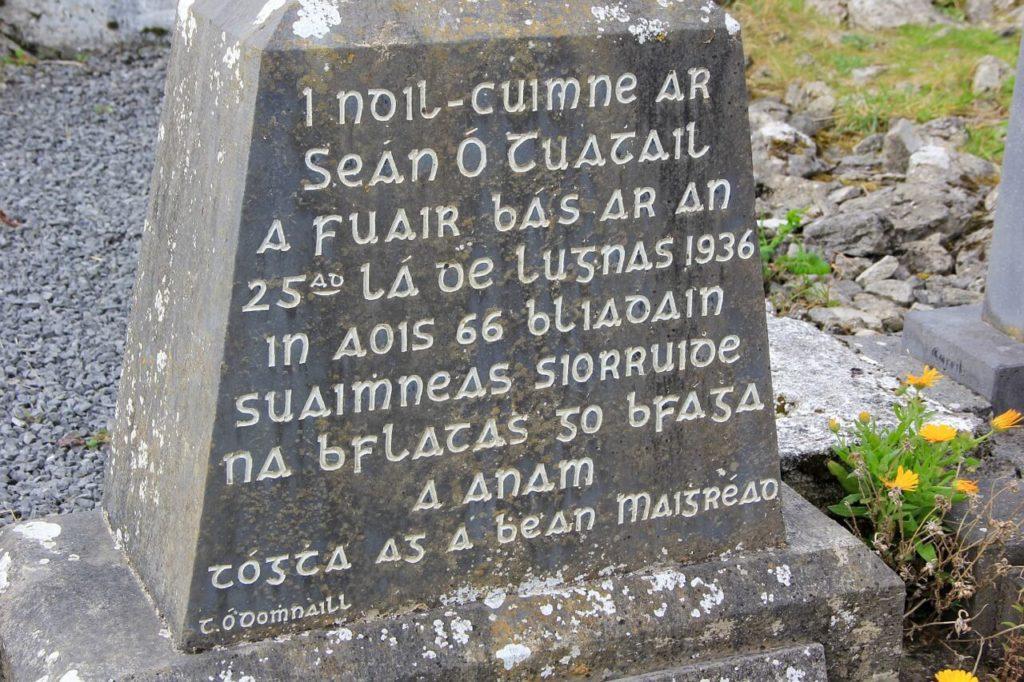 Irish Gaelic: The oldest language in the world