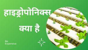 हाइड्रोपोनिक्स क्या है | Hydroponics kya hai in Hindi