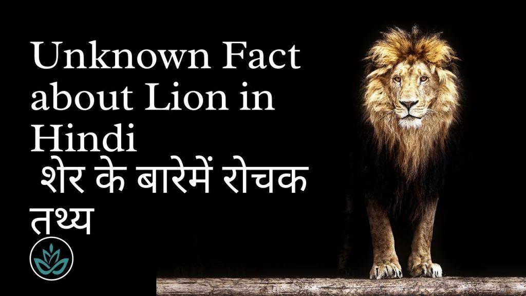 Unknown Fact about Lion in Hindi | शेर के बारेमें रोचक तथ्य