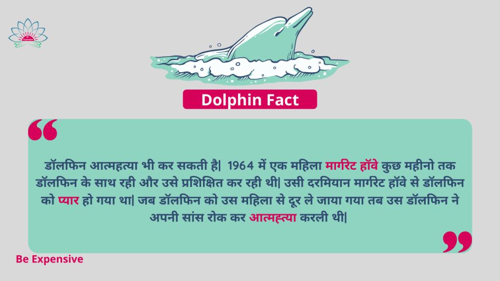 Dolphin Fact in Hindi
